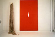 Alice Maher, Familiar 1, 1994, Acrylic on canvas, flax and wood, 250 x 250 cm, Collection Irish Museum of Modern Art, Purchase 1995