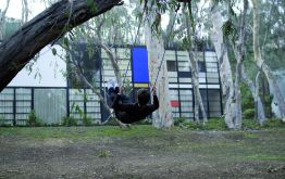 Aurélien Froment. Swing (Case Study House #8), 2008, performance view. Courtesy Aurélien Froment, Store and Motive Gallery