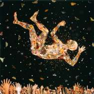 Fred Tomaselli, Expecting to Fly, 2002, Photocollage, leaves, acrylic, gouache and resin on wood panel, 122 x 122cm, Collection of Janice and Mickey Cartin