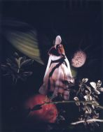 Janaina Tsch�pe, A Botanist's Dream 5, 2006, Polaroid, 9 1/2 x 71/2 inches, Courtesy of the Artist and Sikkema Jenkins & Co